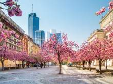 HRS Deals Frühling in Frankfurt