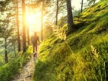 HRS Hotel Deal Bayerischer Wald: Entspannung und Erlebnis im Bayerischen Wald – 69 EUR